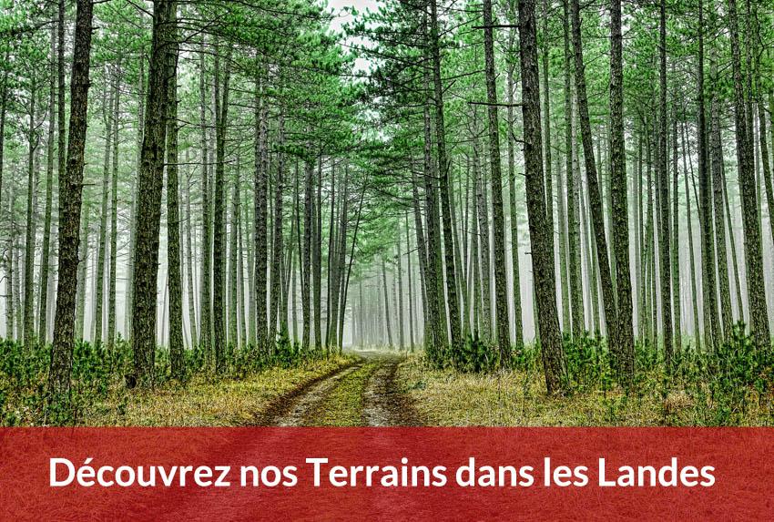 terrain a batir landes